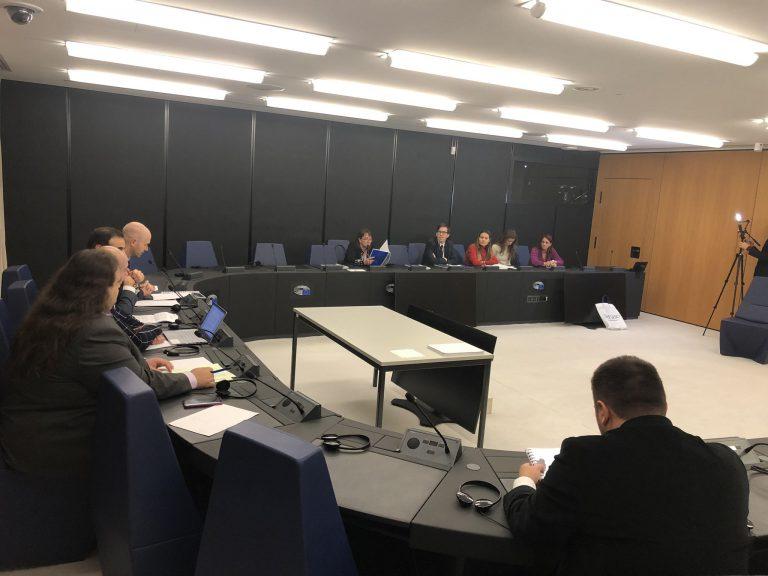 Tactics Institute  holds Seminar at European Parliament